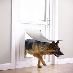 Hondenluiken