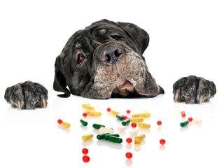 Vitaminen en supplementen