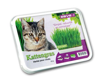 Esve Kattengras 120 gram