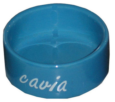 Cavia Eetbak Steen Blauw 12 cm.