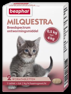 Milquestra Kat Klein en Kitten 2 tablet